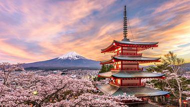 11 unfassbare Fakten über Japan