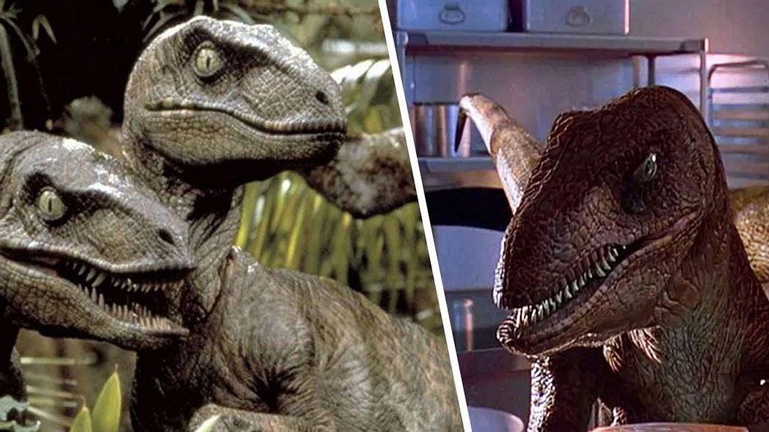 Jurassic Park Velociraptoren