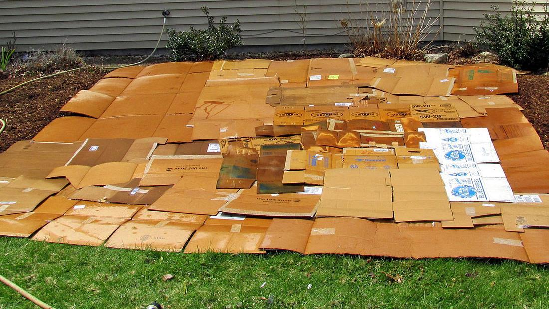 Kartons im Garten haben einen positiven Effekt auf die Erde