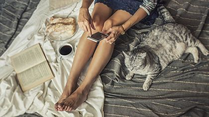 Mit Katzen zu kuscheln, könnte deine Freundin töten