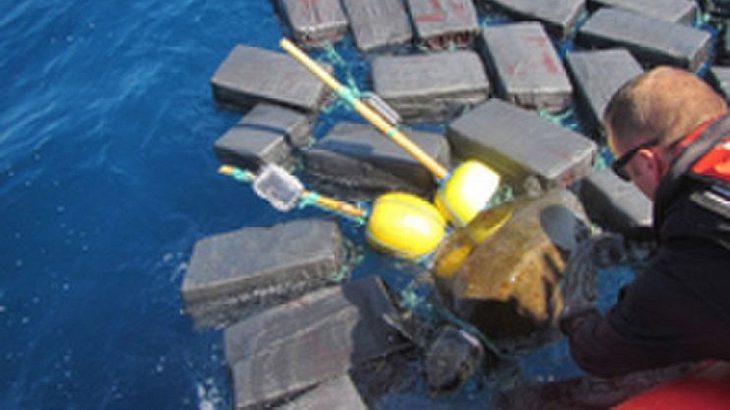Schildkröte schwimmt zwischen Kokain