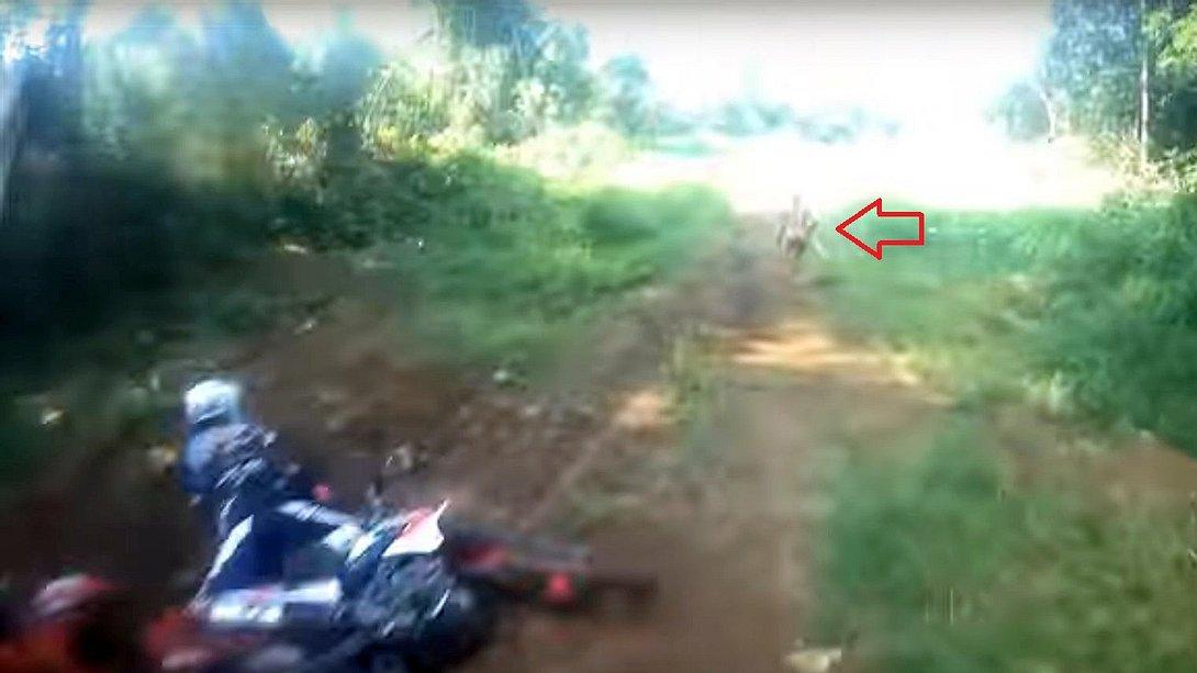 Mysteriöse Attacke: Wald-Kreatur schlägt Biker von Maschine