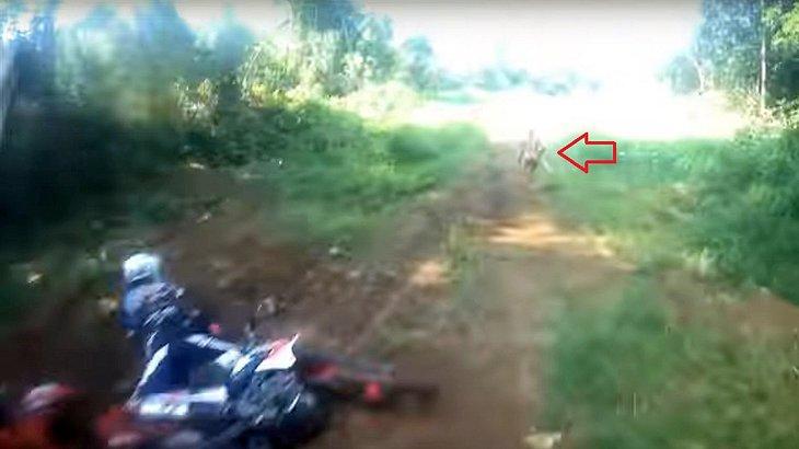 Eine mysteriöse Kreatur hat im indonesischen Dschungel einen Motocross-Fahrer von seiner Maschine befördert
