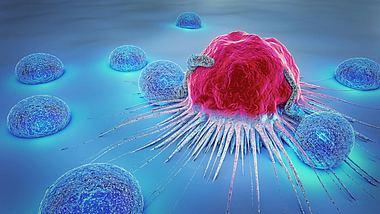 Durchbruch: In einem Jahr können wir Krebs heilen