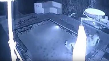 Überwachungskamera filmt schockierende Krokodil-Attacke