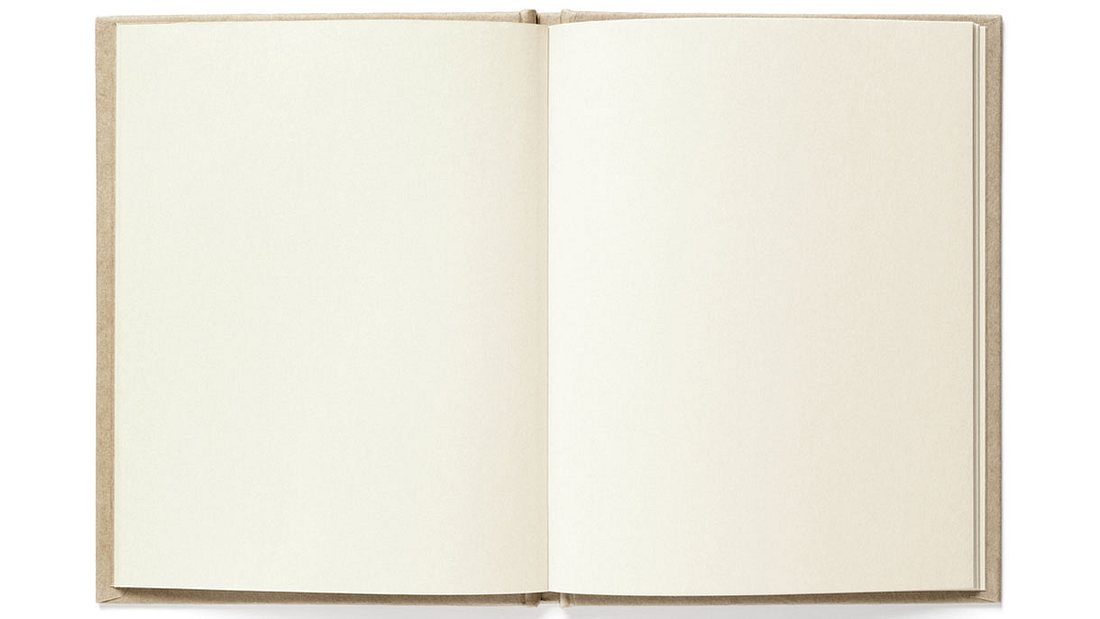 Michael J. Knowles' Reasons to Vote for Democrats: A Comprehensive Guide besteht aus 266 leeren Seiten