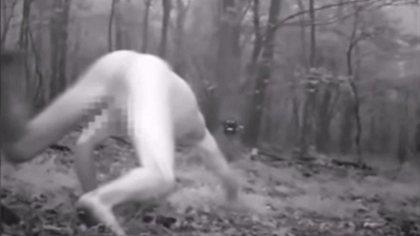 Mann nimmt LSD – und verwandelt sich in sibirischen Tiger