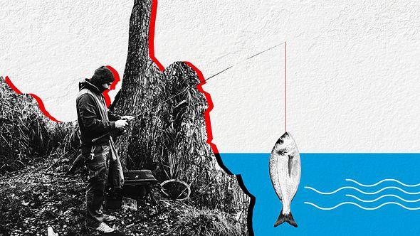 Angler - Foto: DAFV ; iStock / hdagli