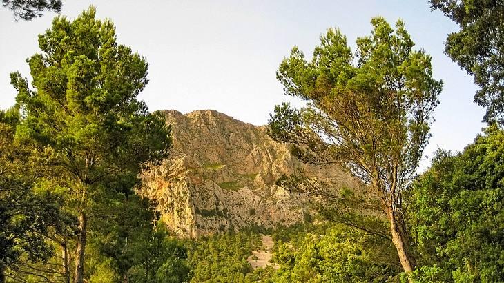 Der Puig Major ist der höchste Berg der Insel