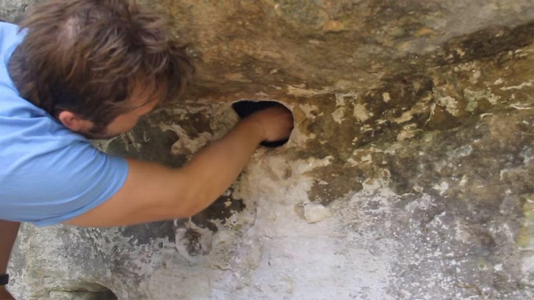 Mann entdeckt Loch voller Spinnen - greift rein