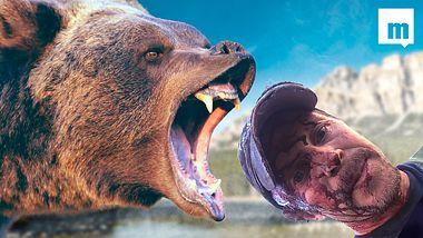 Viral-Hit: Mann dokumentiert Momente nach einer Grizzlybär-Attacke