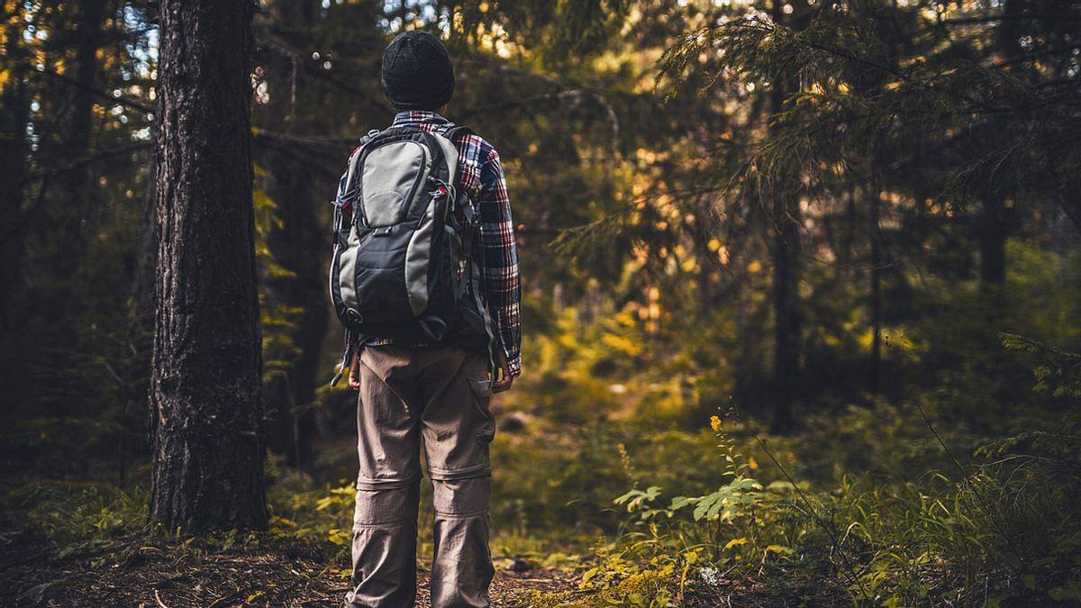 Polizei warnt: Wenn du das jetzt im Wald machst, drohen dir hohe Strafen