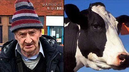 Mann fistet Kuh – Lebenslanges Bauernhof-Verbot