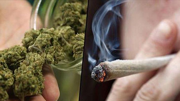 WHO erklärt: Medizinisches Marihuana ohne gesundheitliche Risiken