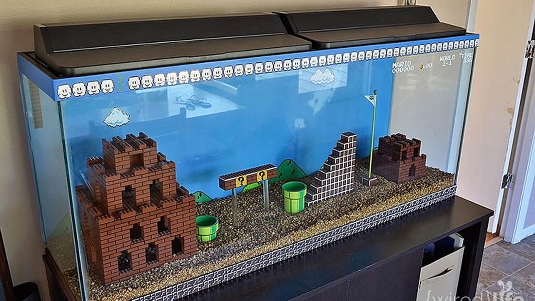 Das Super-Mario-Aquarium von Grafikdesignerin Kelsey Kronmiller