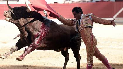 Schluss mit lustig: Balearen verbieten blutige Stierkämpfe