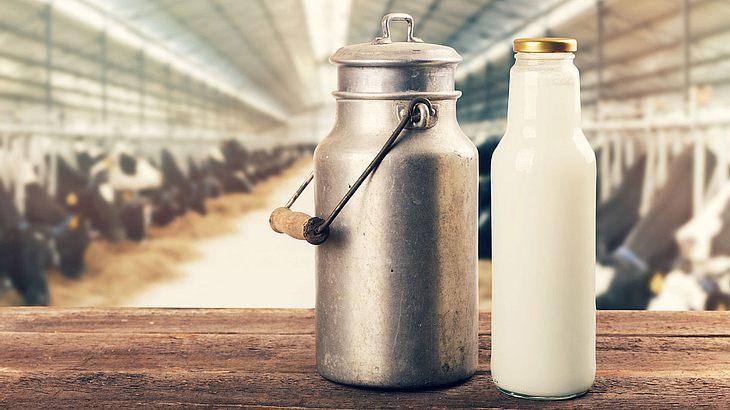 Milch kann so viel mehr, als man denkt (Symbolfoto).