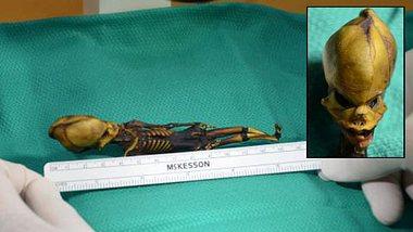 Ata hat gelebt: Rätsel um Mini-Alien-Mumie gelöst