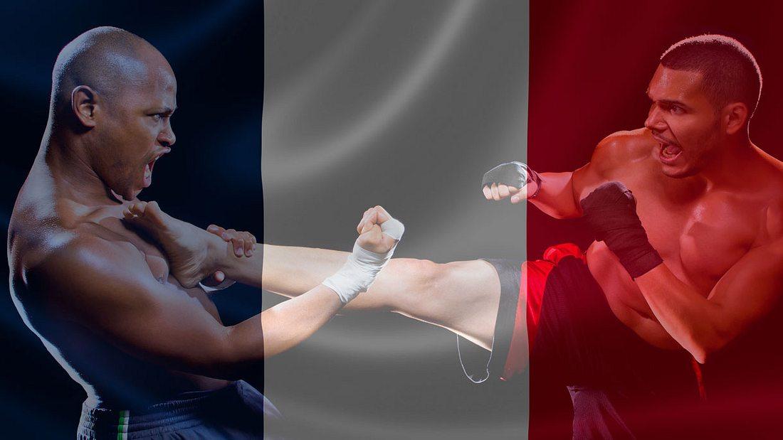 MMA-Verbot in Frankreich wird aufgehoben (Collage).