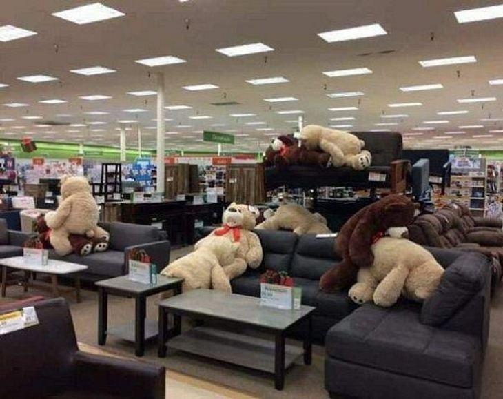 Teddybär-Orgie auf der Couch im Möbelhaus