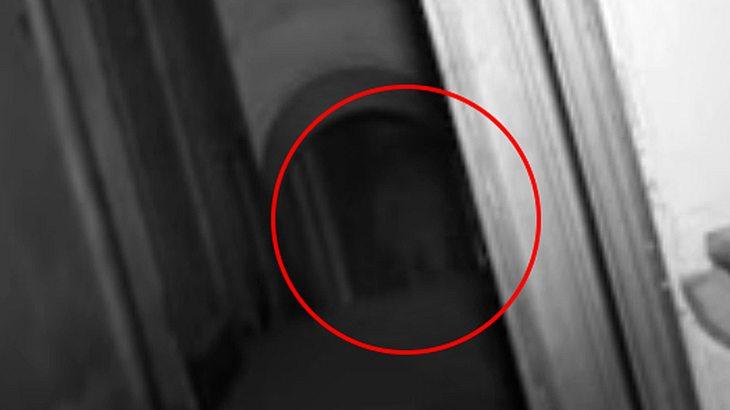 Ist in dem Bild ein Geist zu sehen?