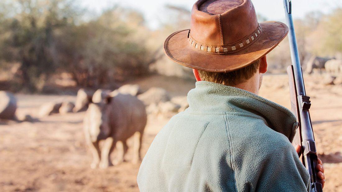 Nashorn-Jagd