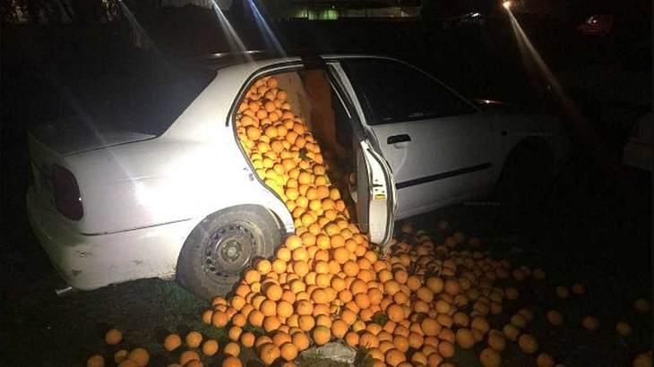 Diebstahl von vier Tonnen Orangen