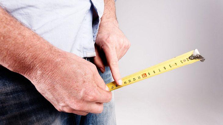 durchschnittslänge penis