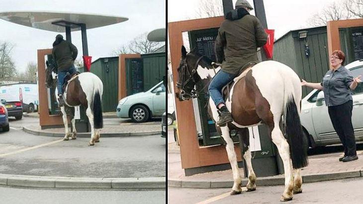 Ein Pferd im McDrive