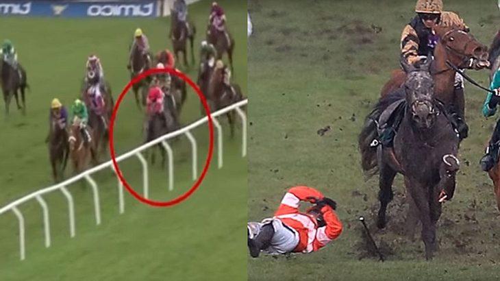 Pferd bricht sich während eines Rennens das Bein