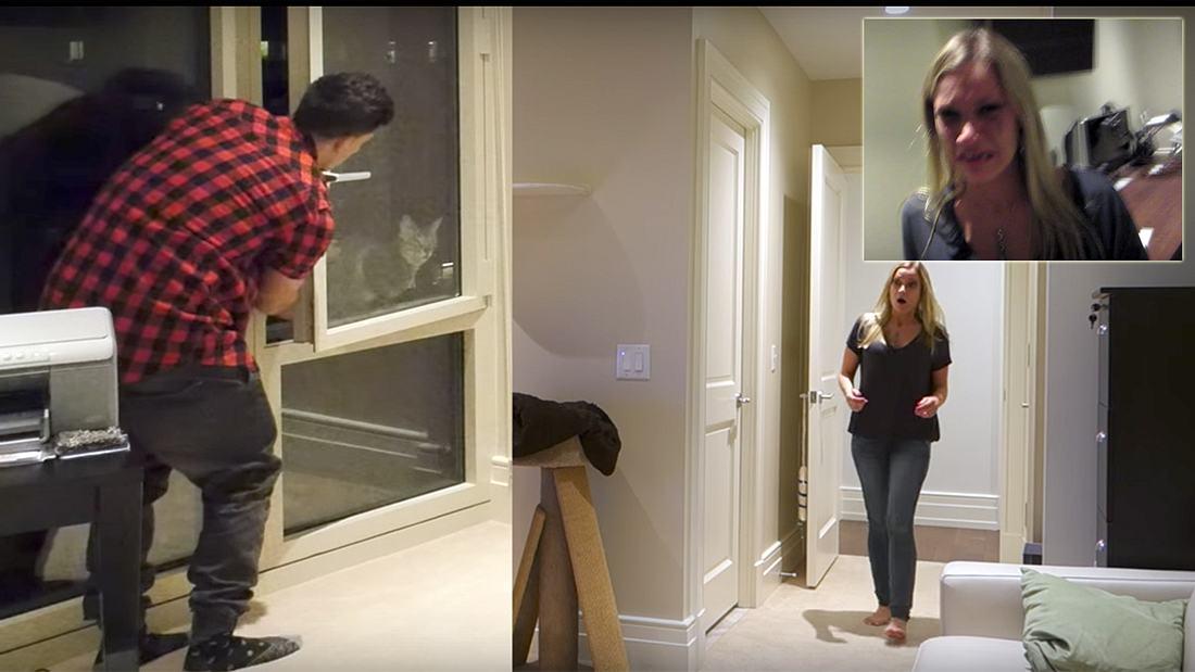 Prank: Ein Mann schmeißt die Katze seiner Frau aus dem Fenster
