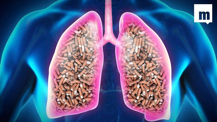 Das passiert mit deinem Körper, wenn du das Rauchen aufgibst