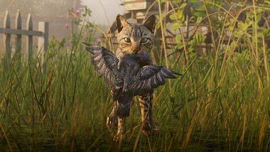Wegen Tierrassismus: Red Dead Redemption 2 soll streichelbare Kätzchen bekommen