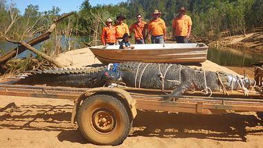 Gefangenes Riesen-Krokodil - Foto: Facebook / Northern Territory Parks and Wildlife