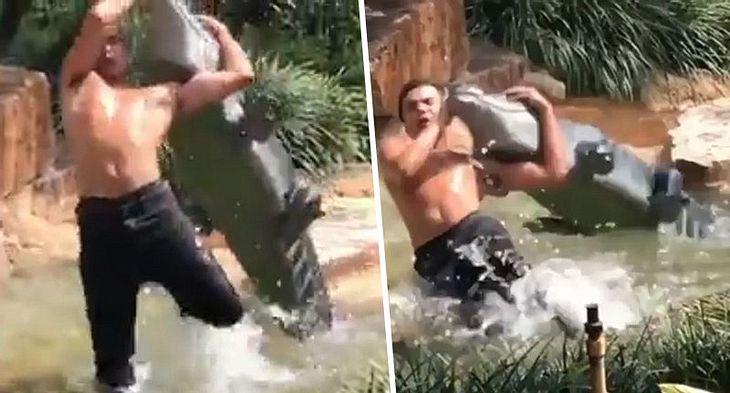 Wrestling mit einem Alligator