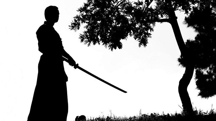 Um die Kunst des Schwertkampfes zu beherrschen, bedarf es jahrelanger Übung
