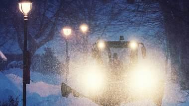 Extremer Schnee - Foto: iStock / shaunl