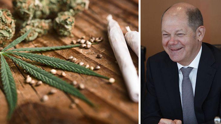 """Vizekanzler Scholz: """"Cannabis ist und bleibt eine Droge"""""""
