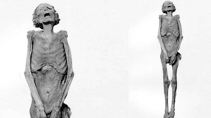 """Mysterium um Ägyptens """"schreiende Mumie"""" endlich gelüftet"""