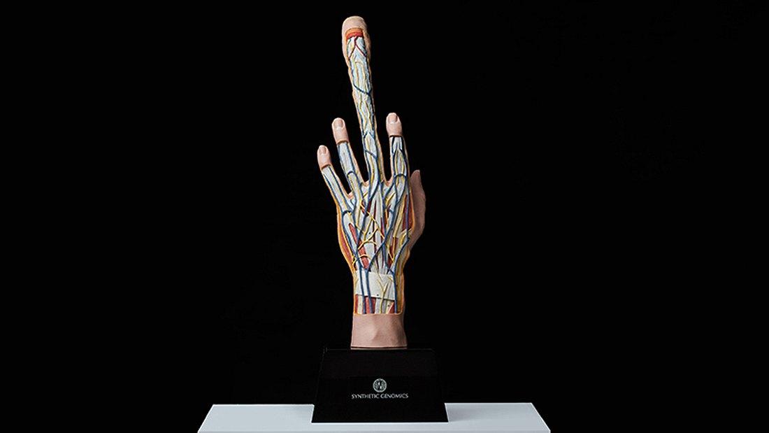 The Seeding Finger: Die Zukunft der Fortpflanzung?