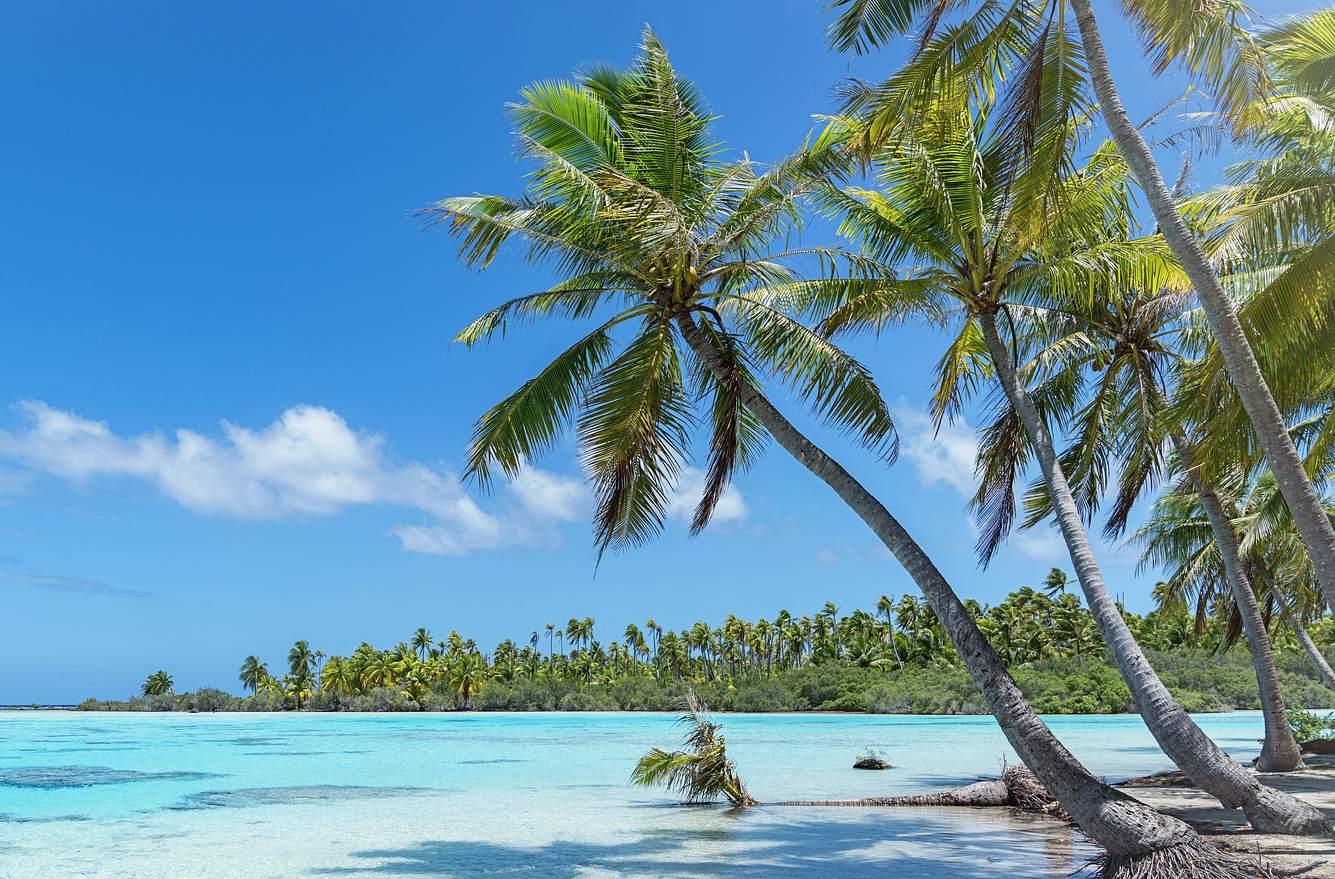 Strand, Palmen, Meer