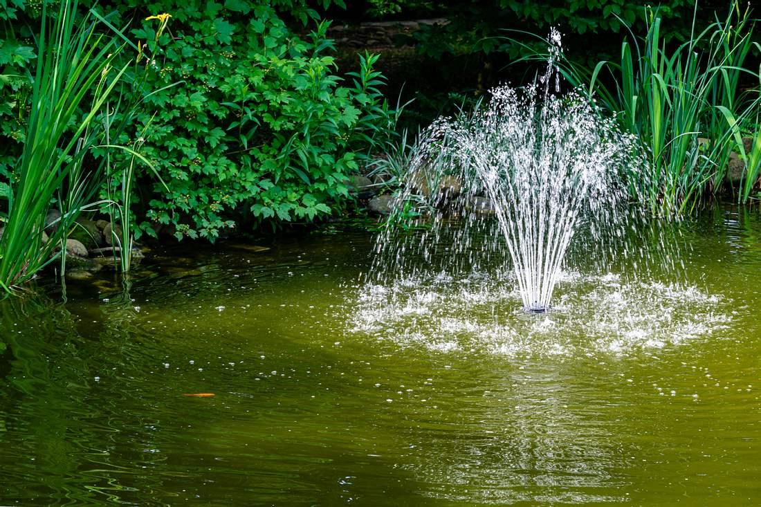 Eine Teichpumpe sprüht Wasser in einem Teich nach oben