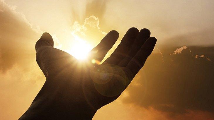 Licht als Lebensquelle