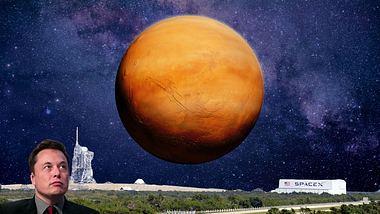 Elon Musk und seine Vision von einer bemannten Mars-Mission - Foto: iStock / YMZK-photo / dottedhippo / Bill Pugliano (Collage Männersache)