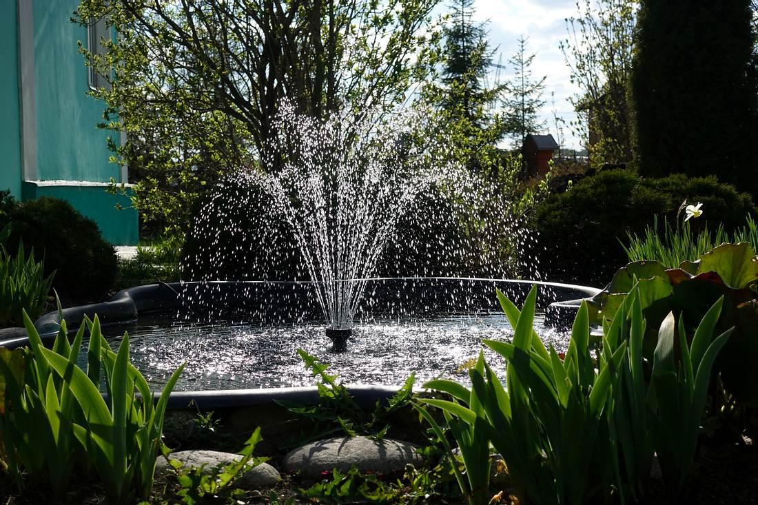 Ein kleiner Teich mit einem Springbrunnen in der Mitte im Garten