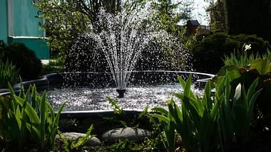 Ein kleiner Teich mit einem Springbrunnen in der Mitte im Garten - Foto: iStock/LegART