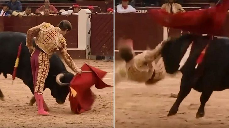 Matador wird von Stier an der schmerzhaftesten Stelle aufgespießt