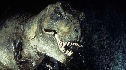 US-Forscher haben das Skelett eines schwangeren T-Rex inklusive DNA-Spuren entdeckt - Foto: tumblr/dinosaursalldamnday