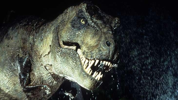 US-Forscher haben das Skelett eines schwangeren T-Rex inklusive DNA-Spuren entdeckt