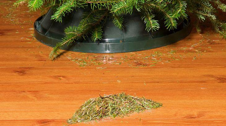Weihnachtsbaum Tipp Der 5 Cent Trick Gegen Nadeln Auf Dem Boden